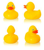 Toy rubber duck Royalty Free Stock Photography