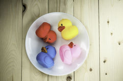 Toy rubber duck on a plate Royalty Free Stock Photos