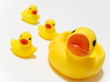 Toy Rubber Ducks. Bathtub rubber duck toys for children Stock Photo