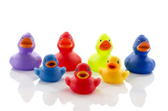 Toy rubber ducks isolated on white Royalty Free Stock Image