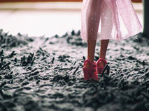Toy`s legs Royalty Free Stock Photography