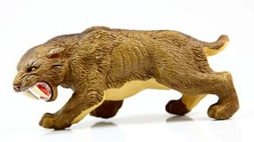 Toy saber-toothed tiger. On white background Stock Images