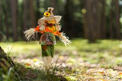 Toy Scare Crow na grama em uma floresta foto de stock