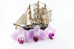 Toy ship. With flowers orchids on a light background Royalty Free Stock Photos