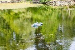 Toy Ship en el lago verde Fotos de archivo libres de regalías