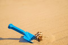 Toy, shovel with snail on a sunny beach Stock Photography