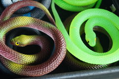 Toy snake Stock Images