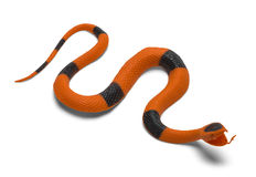Toy Snake Royalty Free Stock Photography