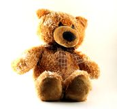 A toy - a soft bear  Royalty Free Stock Photo