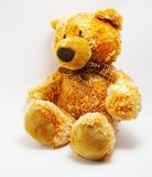 A toy - a soft bear royalty free stock image
