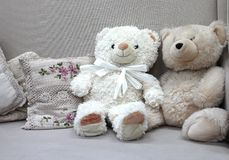 Toy soft bears for kids cute funny stock images