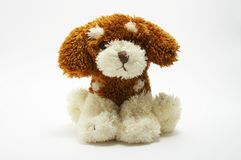 A toy - soft dog. A toy - a soft, children's dog (The darling royalty free stock images