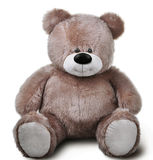 Toy soft teddy bear Stock Images
