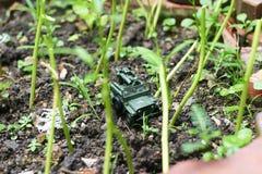 A toy soldier through the backyard garden Royalty Free Stock Photos