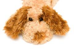 Toy Sorrowful Dog. On white backgroung Stock Photo