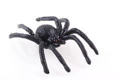 Toy spider. Royalty Free Stock Photos