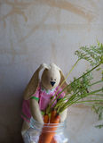 Toy stores Bunny carrots for the winter Stock Photography
