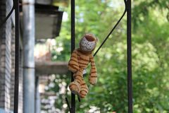 Toy striped tiger sitting on an iron fence royalty free stock photos