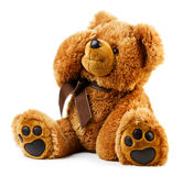 Toy teddy bear. Isolated on white background Royalty Free Stock Photo