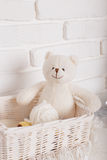 toy teddy bear in basket on wooden table. retro filtered image stock photography