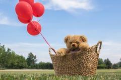 Toy Teddy Bear in einem Korb mit roten Ballonen stockfotografie