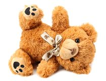 Toy teddy bear isolated on white background stock images