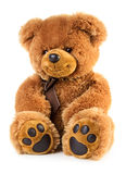 Toy teddy bear Stock Photo
