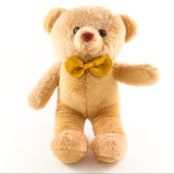 Toy teddy bear isolated on white background Royalty Free Stock Photos