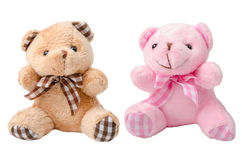 Toy teddy bear and pink bear. Stock Image
