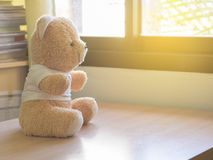 Toy teddy bear sits by the window. royalty free stock image