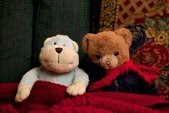 Toy Teddy Bear und Affe, die zusammen als Freund-Freundschaft sitzen Lizenzfreie Stockfotos