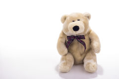 Toy teddy bear wearing bow-tie Royalty Free Stock Images