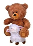 Toy teddy bear on whit sheep Stock Images