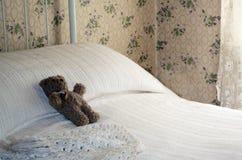 Toy teddy resting Stock Photo