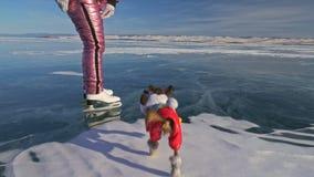 Toy Terrier in grappige kleren en grappige schoenenspelen met bal op mooi ijs in barsten Mamma en dochter in sporten stock videobeelden