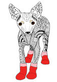Toy terrier hand drawn sketched  illustration. Doodle graphic. Toy terrier in red boots Hand drawn sketched  illustation. Doodle graphic with ornate pattern Stock Photo