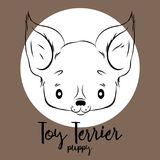 Toy Terrier head  on white background. Vector illustration, design element for cards, banners and other Royalty Free Stock Photography