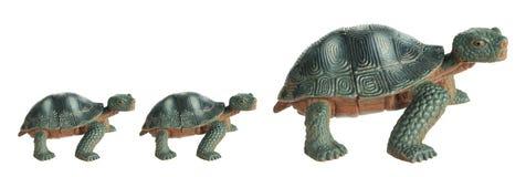 Toy Tortoises royalty-vrije stock afbeelding