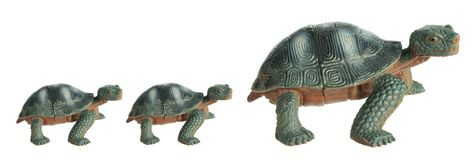 Toy Tortoises Royalty Free Stock Image