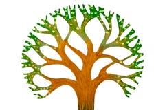 Toy tree Stock Photos