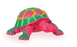 Toy Turtle Fotografia de Stock