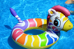 Toy in the water. In the pool royalty free stock photography