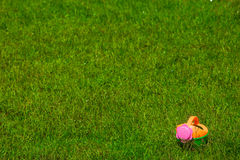 Toy watering-can on grass Royalty Free Stock Image