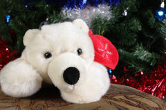 Toy white bear Stock Image