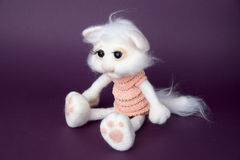 Toy white cat in a gift Stock Images