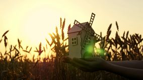 A toy windmill in the hand of a young girl against a background of golden ears of wheat and sunset. stock video