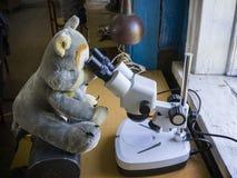Toy Wolf kijkt door een microscoop Stock Fotografie