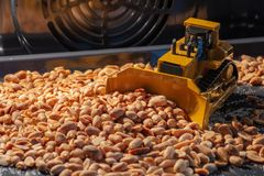 Toy yellow bulldozer collects roasted nuts in the oven. Toy bulldozer collects roasted nuts in the oven royalty free stock image