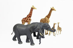 Toy zoo animals Royalty Free Stock Photos