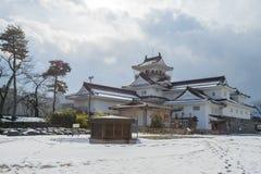 Toyama slott i den Toyama staden Royaltyfri Fotografi